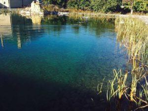 Плавательный пруд-размером-640-м.кв-более 1000 м.куб воды