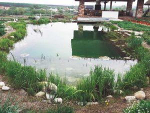 Плавательный пруд в украинском стиле в Харькове цена