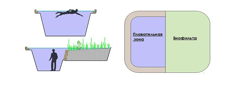 Зона для плавания и зона для биофильтрации. Биоплато ArchiFlora