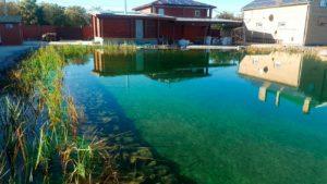 Очистка воды в пруду с помощью биоплато ArchiFlora