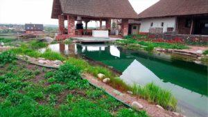 Плавательный пруд Биологическая-фильтрация в плавательном пруду