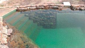 Пруд для плавания с биоплато-Биологическая-фильтрация-в-пруду в Харькове ArchiFlora