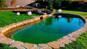 Флоринка Плавательный пруд с био фильтрацией