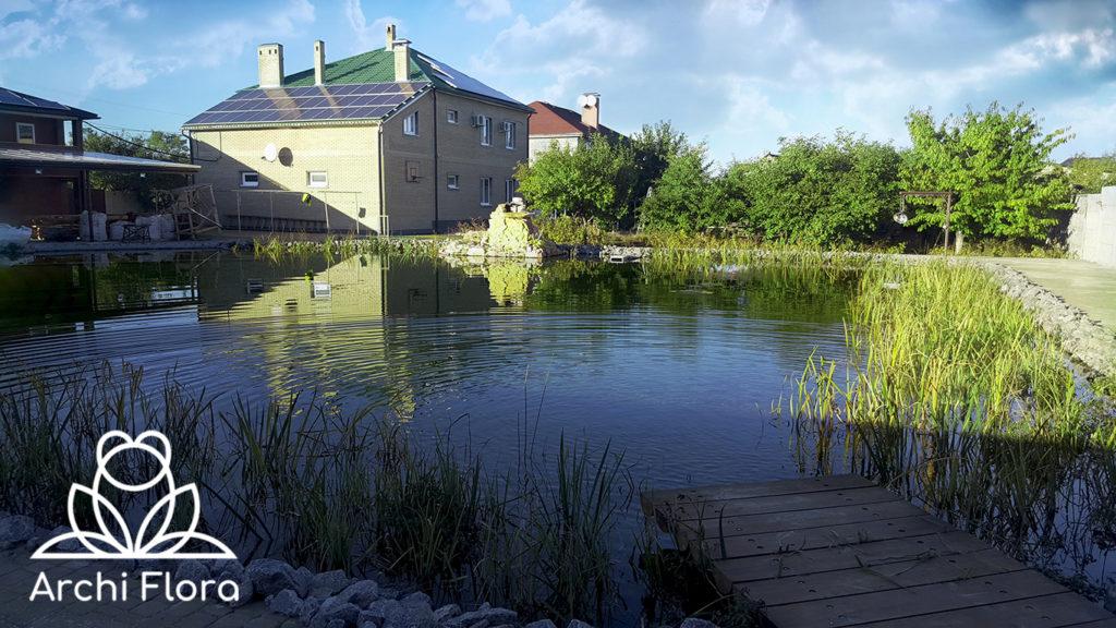 Вид с беседки на большой пруд с биоплато - 1000 метров кубических воды