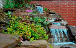 3.Виды-водопада-с-растениями-и-изливами-2014-год-строительства