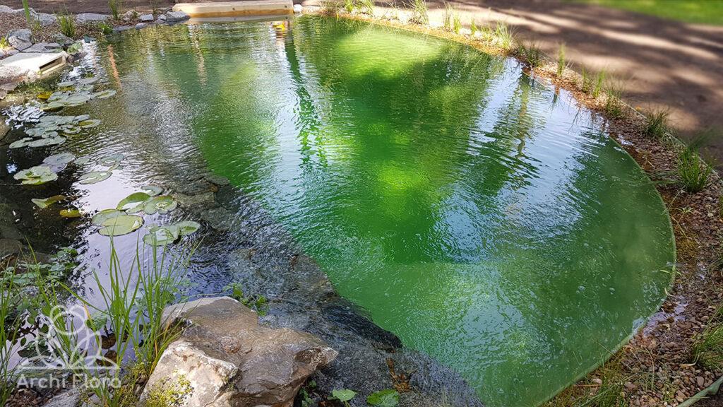 Плавательная зона в пруду