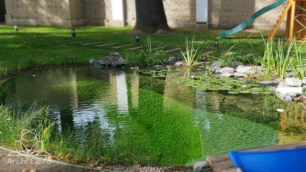 маленький плавательный пруд Парк Хаус