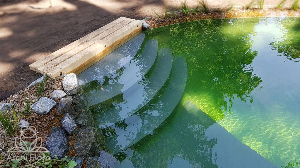Вход в плавательный пруд